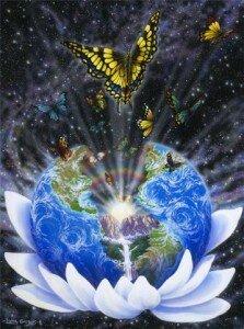 Бабочка в лилии